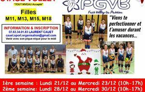 Stage volley de Noël